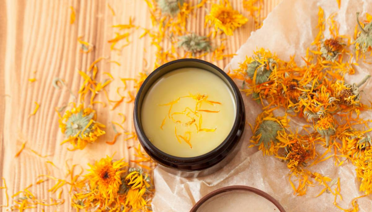 Properties and benefits of calendula tincture