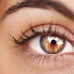 Melatonin, the hormone that protects eyesight from retinal degeneration
