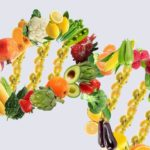 Foods that interact with DNA to make you lose weight. Find out what they are