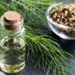 Cellulite and swollen belly, the beneficial effects of fennel oil