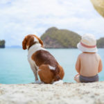 Dogs on the beach are good for children. Science says it