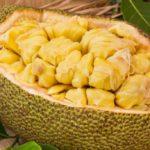 Jackfruit: nutritional properties and recipes