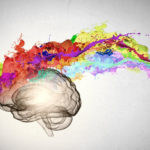 Keep the brain young. A book explains how to do it