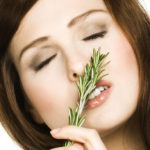 Rosemary strengthens the memory: very useful for those who have exams
