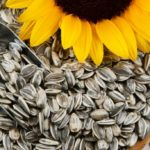 Sunflower seeds against high blood pressure and cholesterol