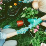 Gifts for gardening enthusiasts: the most useful