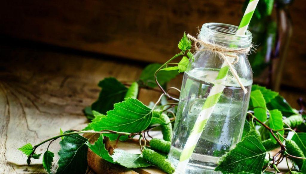 All the benefits of birch sap detox