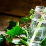 All the benefits of birch sap detox