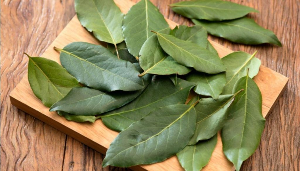 Diabetes, how to keep it at bay with laurel