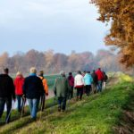 Groups of walks (ie free sports)