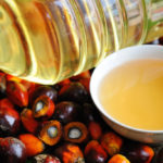 Palm oil, everything you need to know about prejudice