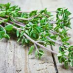 Thyme: discover its properties and how to grow it at home