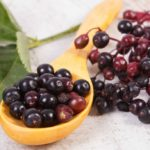 Elderberry: do you know this plant and its beneficial properties?
