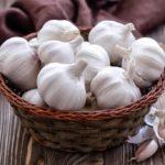5 natural antibiotics to combat seasonal ailments
