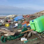 Shock study: in the oceans more plastic than fish
