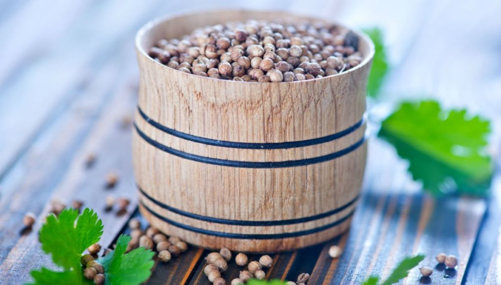 Coriander: do you know its properties and can you grow it?