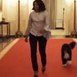 Michelle Obama, the last walk in the White House with her dogs