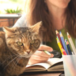 Pet therapy in the classroom to combat exam stress