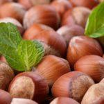 Properties, benefits and calories of hazelnuts