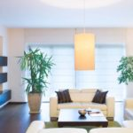 Healthier home environments thanks to plants that purify the air