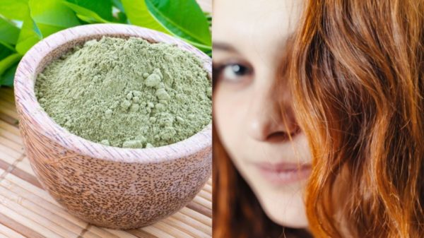Henna and dyeing herbs: types, how to prepare the compresses and how to apply them on the hair
