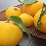 Yuzu, the citrus fruit that helps protect the heart and brain