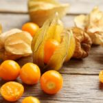 Alchechengi, fill up on vitamin C and prevent diabetes