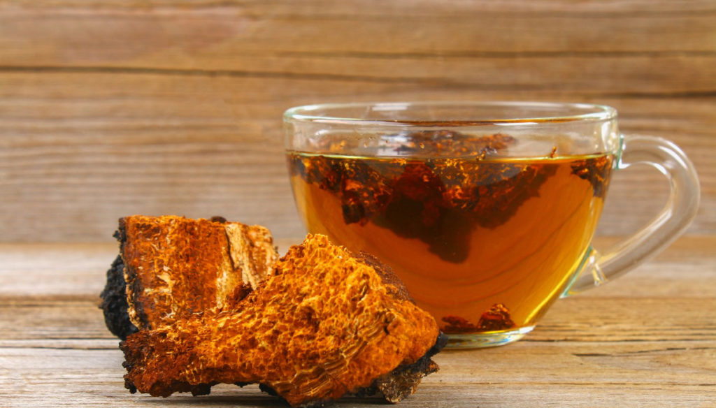 Chaga tea to fight inflammation and strengthen the immune system