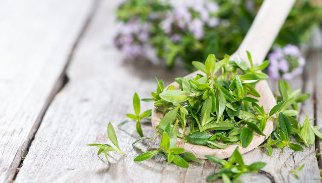 Savory, the special herb that helps control cholesterol