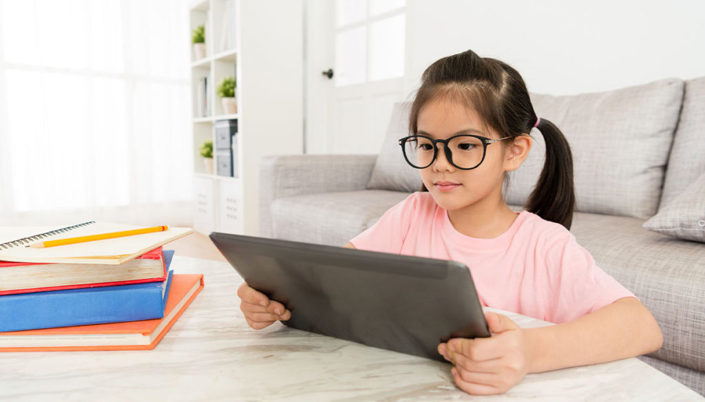Pros and cons of distance learning for students with SLD