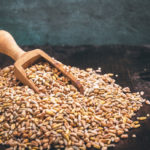 The bread of the Essenes and its extraordinary virtues for health