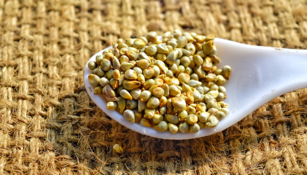 Pearl millet: Helps control weight and protects the heart