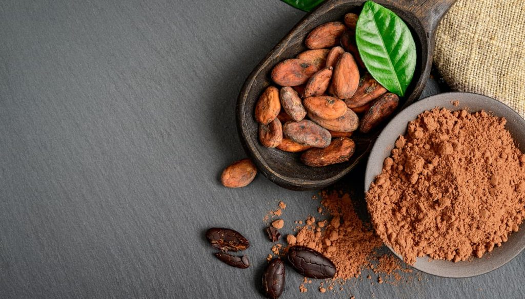 Cocoa, rich in polyphenols and ally of the heart