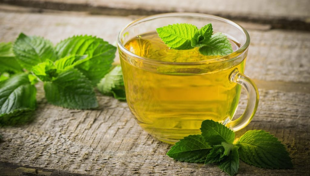 Spearmint: fight digestive disorders and deflate yourself