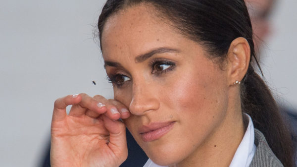 Meghan Markle and Harry, that's how they spent Thanksgiving