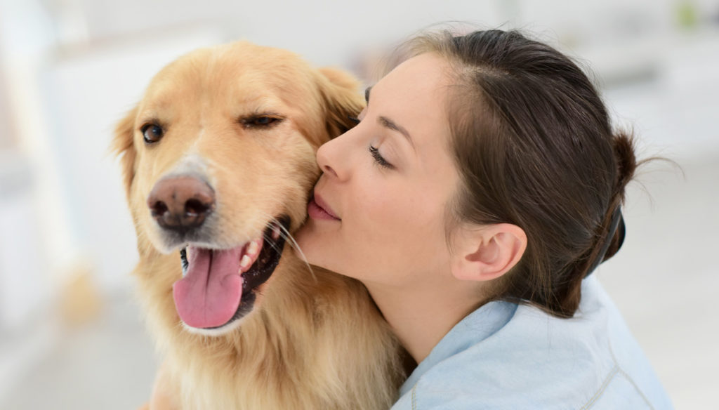 Pet-Therapy, so a dog (and not only) makes us feel better