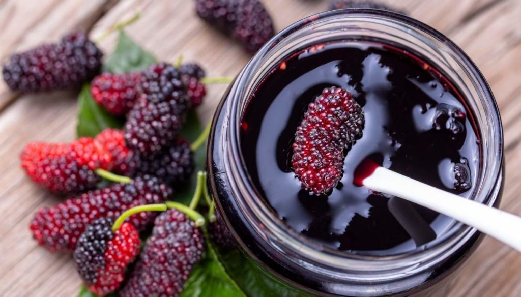 Diet with mulberry blackberries: calories, portions and how to use them in the kitchen