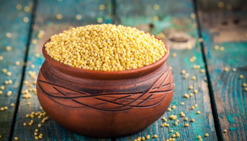 Millet: nutritional values and how to cook it
