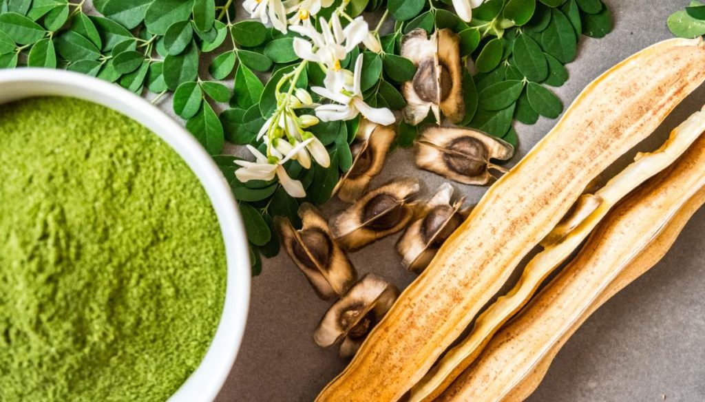 Moringa: benefits, contraindications and use as a supplement