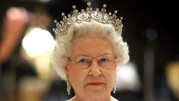 Harry criticized for obscuring the Queen's message