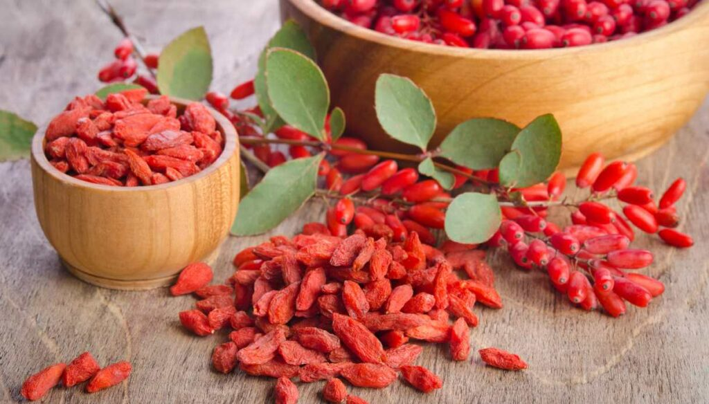 Goji berries: properties, benefits and how to take them