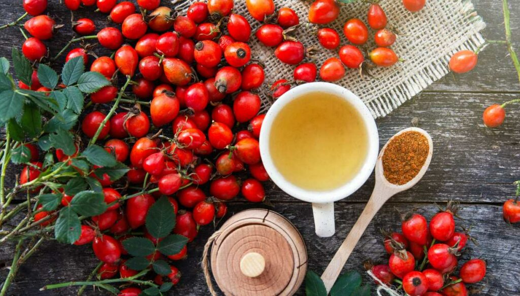 Rosehip: properties, uses and contraindications