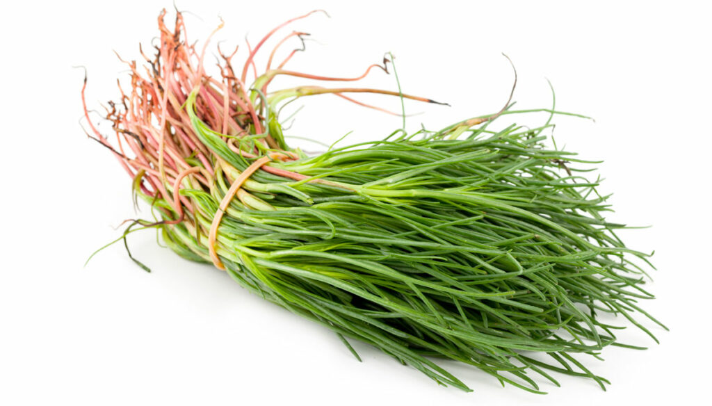 Agretti: what they contain, properties and recipes