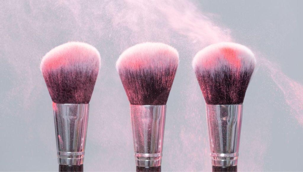 blush makeup powder brushes