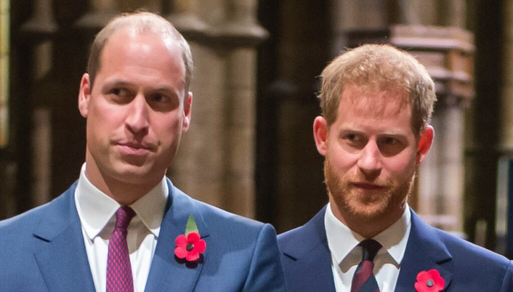 William and Harry, face to face private after Diana's memorial