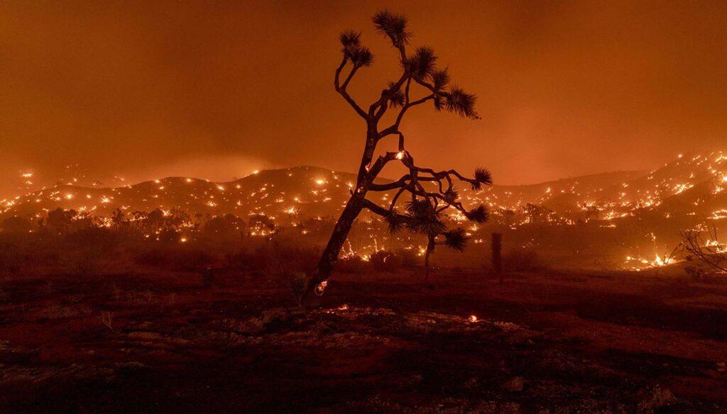siccità in california